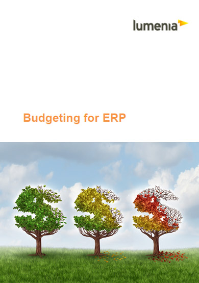 Budgeting for ERP Report