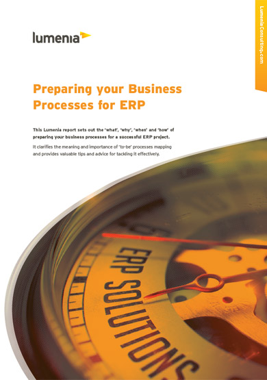 Lumenia Preparing your Business Processes for ERP Report