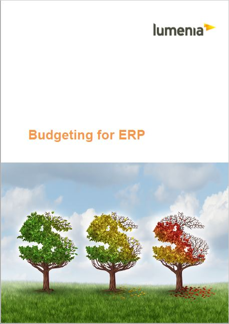 ERP Budgeting Report: ERP Business Case