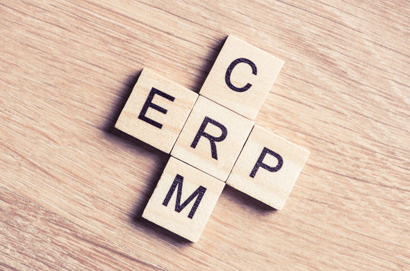 Different ERP Services, Different ERP Challenges