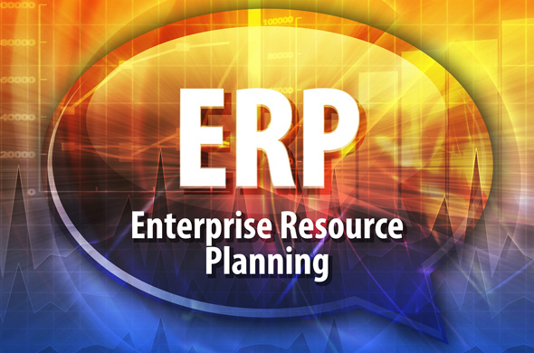 Managing ERP in International Environments