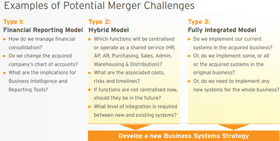 Post-merger Integration: ERP Strategies | Lumenia Consulting